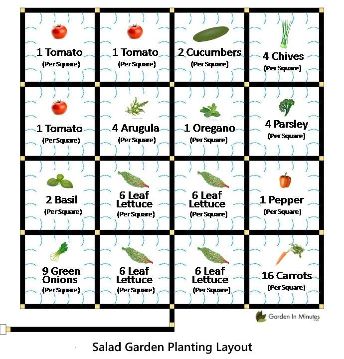 Salad Garden Sample Planting Layout for a 4x4 Planting Area